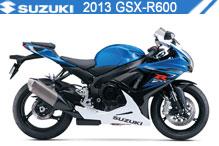 2013 Suzuki GSXR600 Accessories
