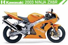 2003 Kawasaki Ninja ZX-6R Accessories