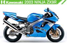 2003 kawasaki Ninja ZX-9R Accessories