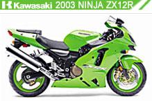 2003 kawasaki Ninja ZX-12R Accessories