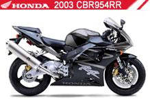 2003 Honda CBR954RR Accessories