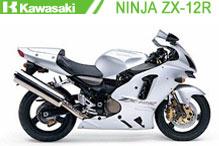 Ninja ZX12R Fairings